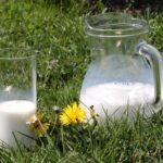 Kalorier i Minimælk